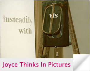 Joyce Thinks In Pictures